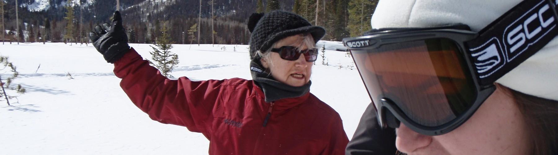 banner-skiing